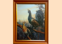Capercaillie, at dawn - painting