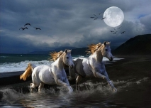 At night the white horses